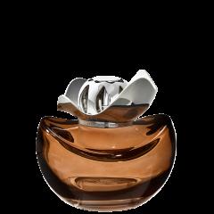 Lampe Berger Giftset Temptation Chocolat