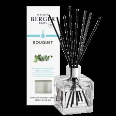 Parfumverspreider Cube Fraîcheur d'Eucalyptus